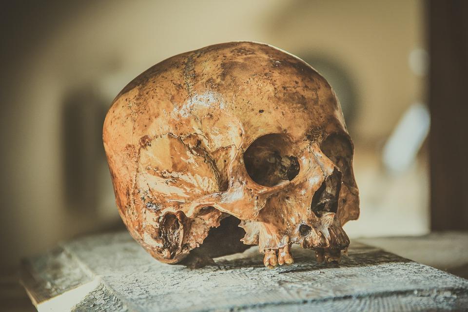 sacrificio-de-niños-perú-Chimú-arqueólogos-