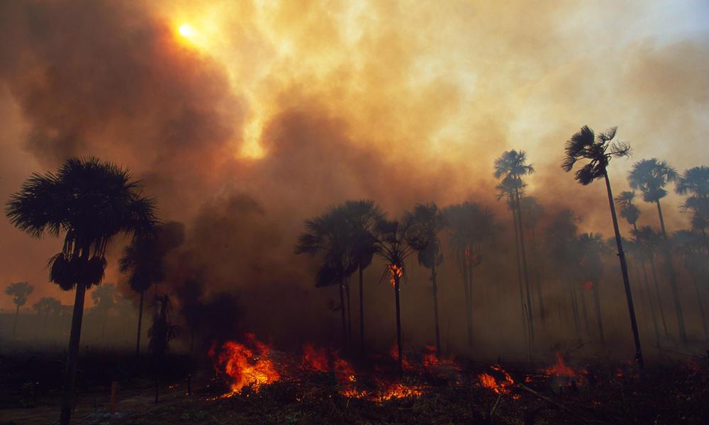 incendios-del-amazonas-brasil-gobierno-bolsonaro-